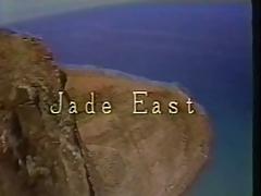 Hawaii Vice 5 - 1989