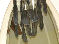 The daily used stockings of Madam. Hum...